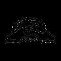 Logo De Brug h VZW